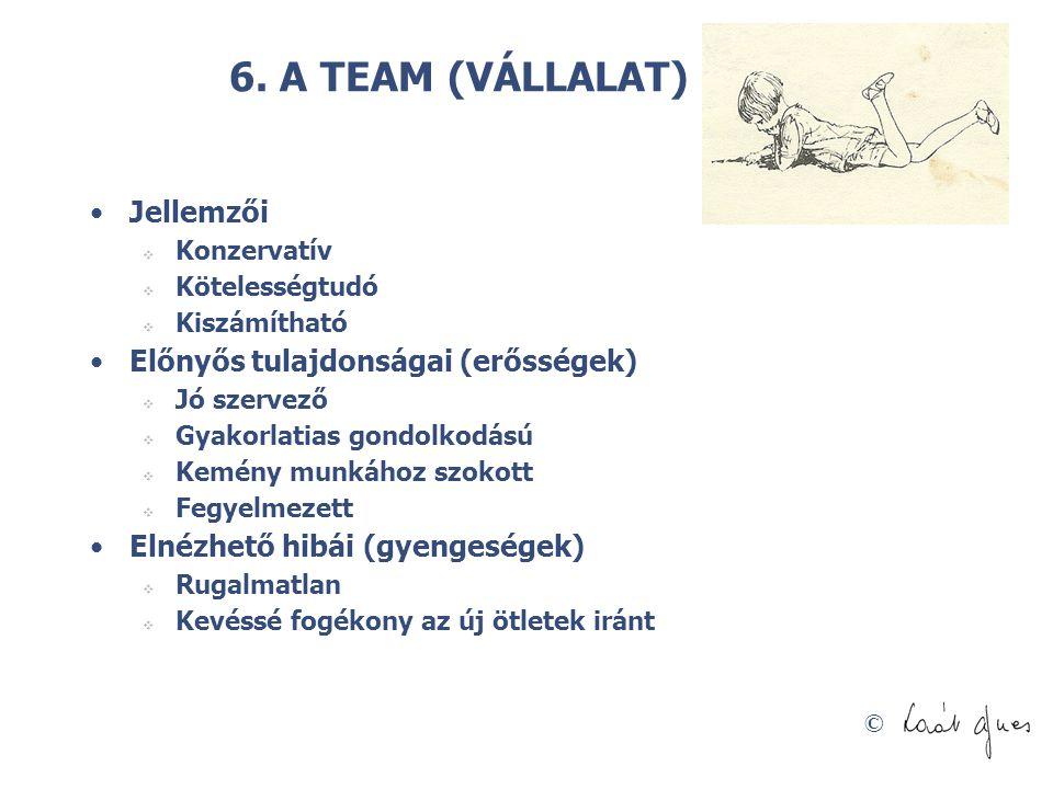 6. A TEAM (VÁLLALAT) ÉPÍTŐ