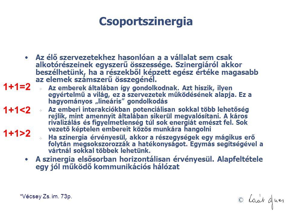 Csoportszinergia 1+1=2 1+1<2 1+1>2