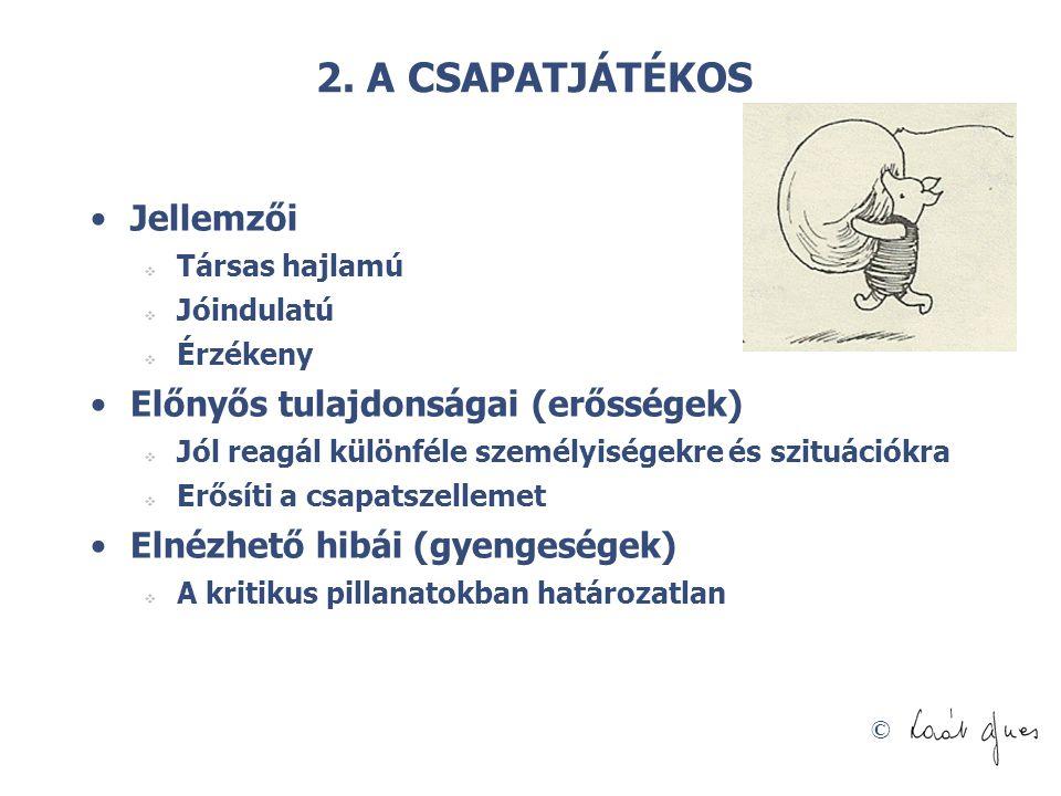 2. A CSAPATJÁTÉKOS Jellemzői Előnyős tulajdonságai (erősségek)