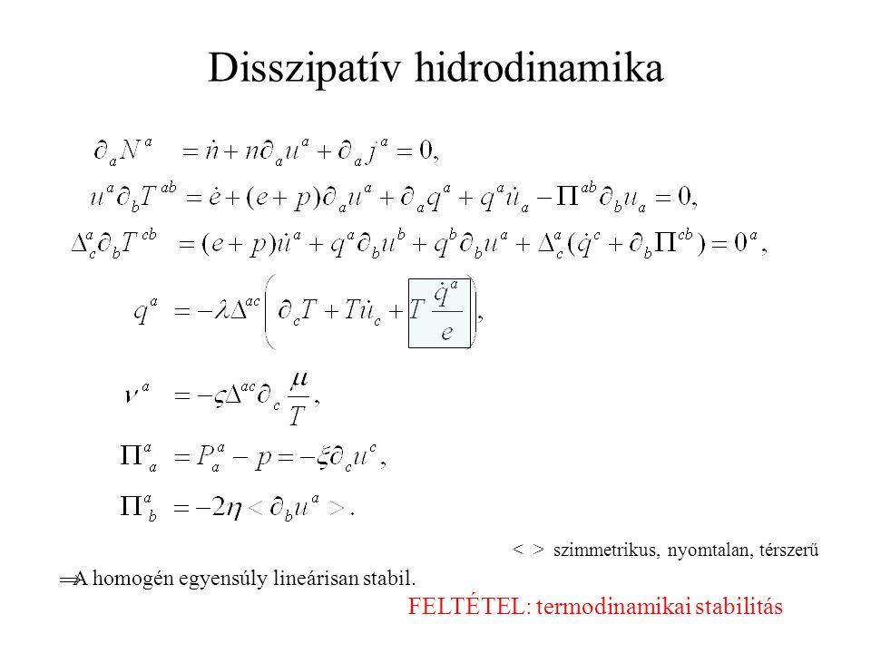 Disszipatív hidrodinamika
