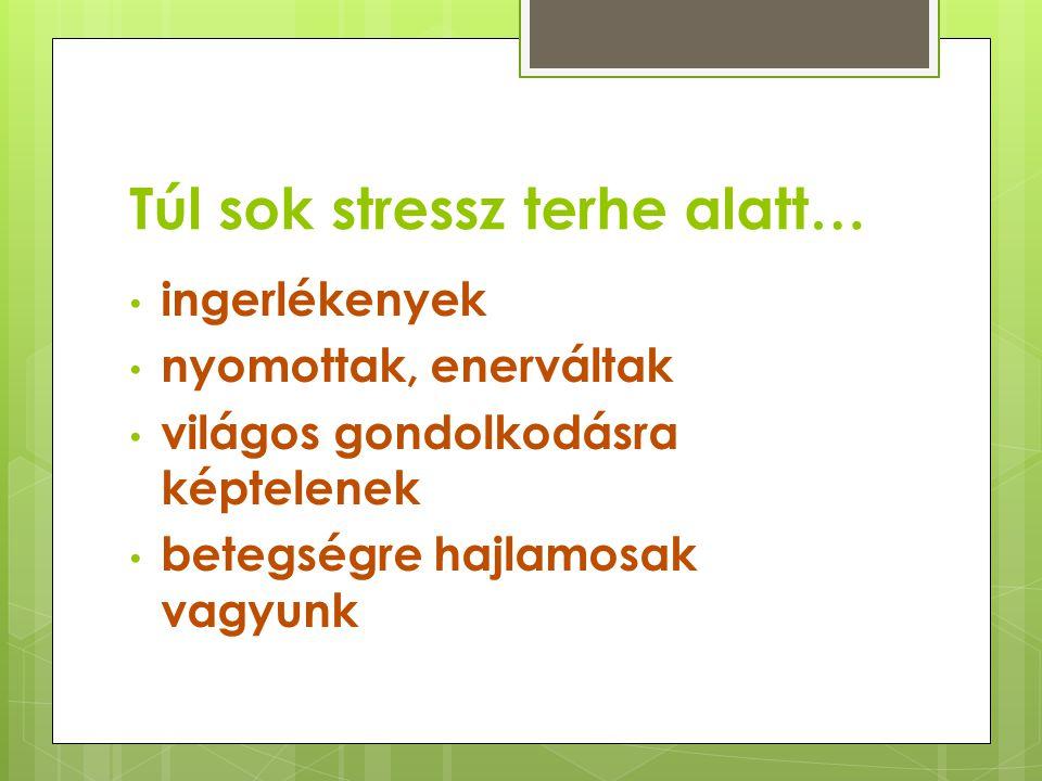 Túl sok stressz terhe alatt…