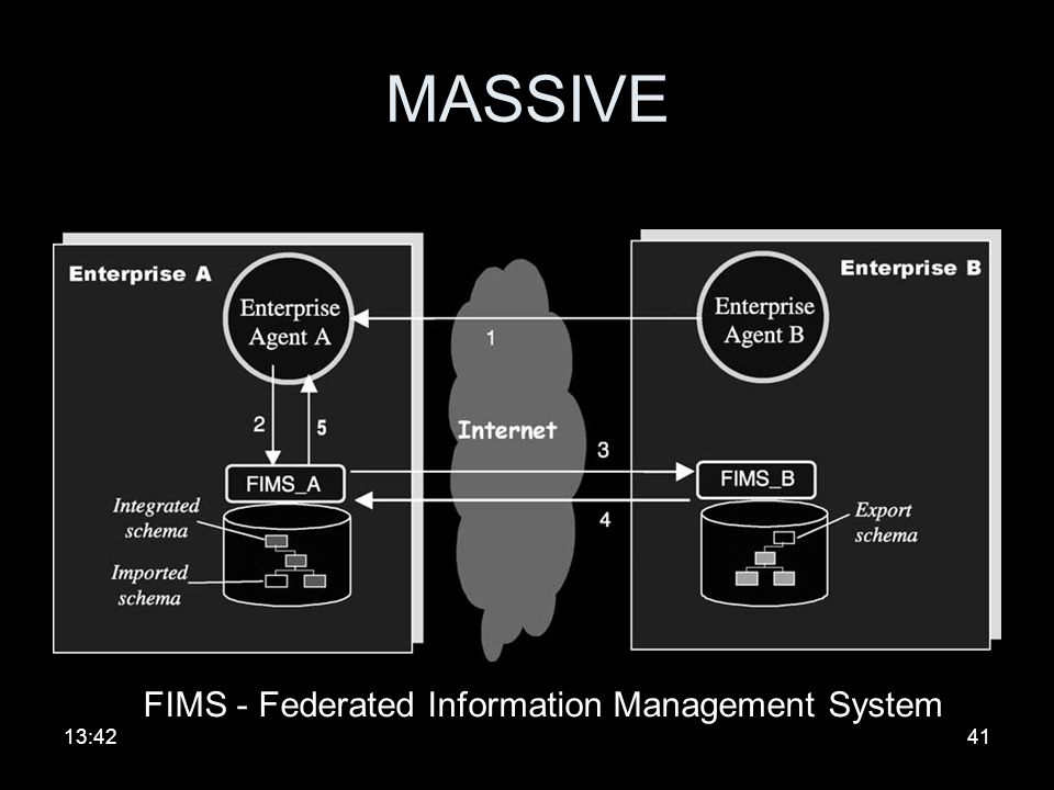 FIMS - Federated Information Management System