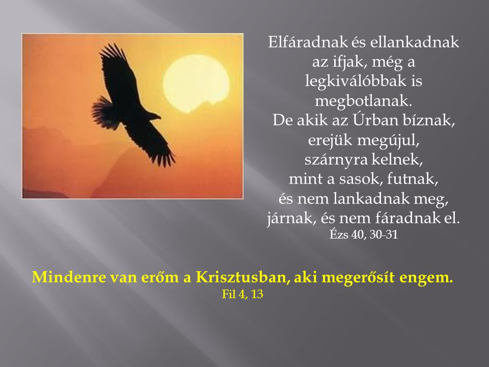 De akik az Úrban bíznak, erejük megújul, szárnyra kelnek,