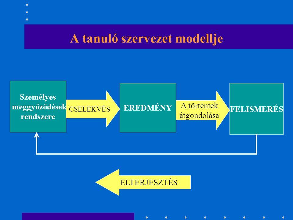 A szervezeti tanulás aspektusai