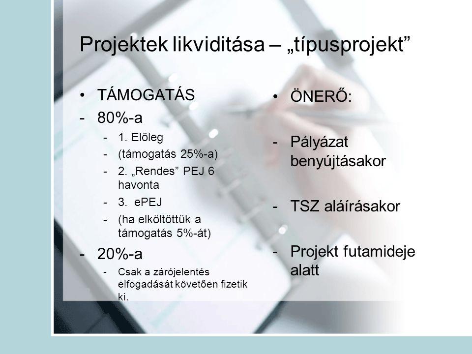 """Projektek likviditása – """"típusprojekt"""