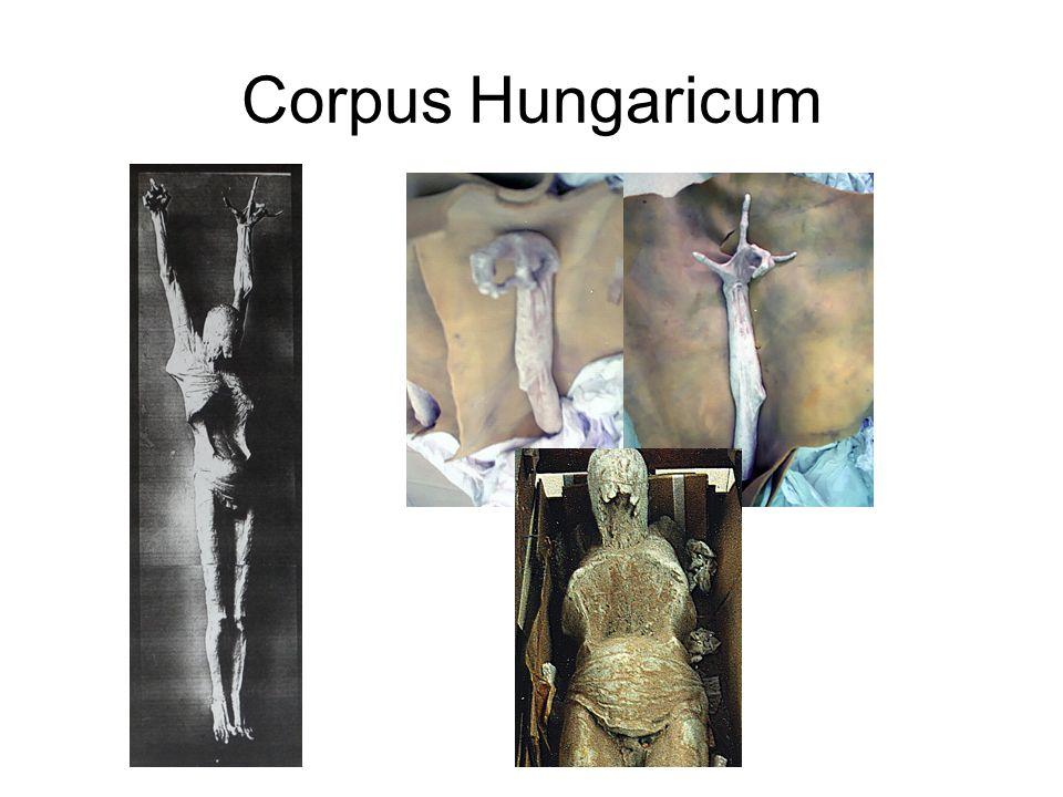Corpus Hungaricum