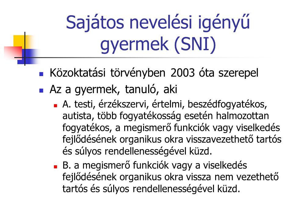 Sajátos nevelési igényű gyermek (SNI)