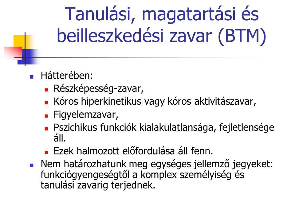 Tanulási, magatartási és beilleszkedési zavar (BTM)