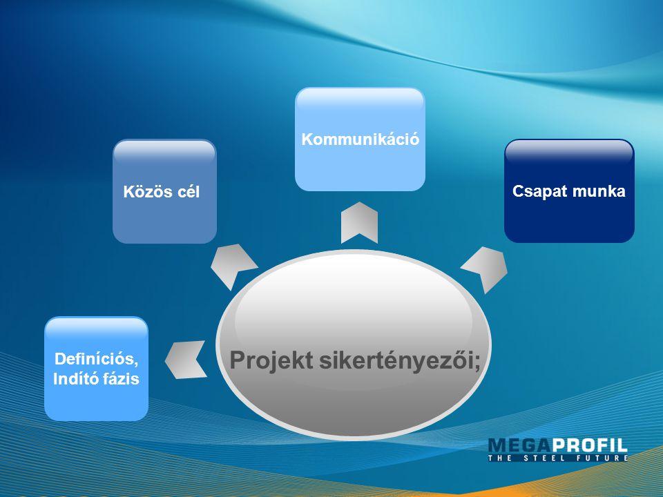 Projekt sikertényezői;