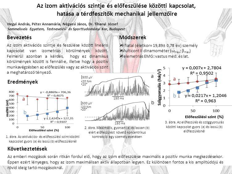 Az izom aktivációs szintje és előfeszülése közötti kapcsolat, hatása a térdfeszítők mechanikai jellemzőire