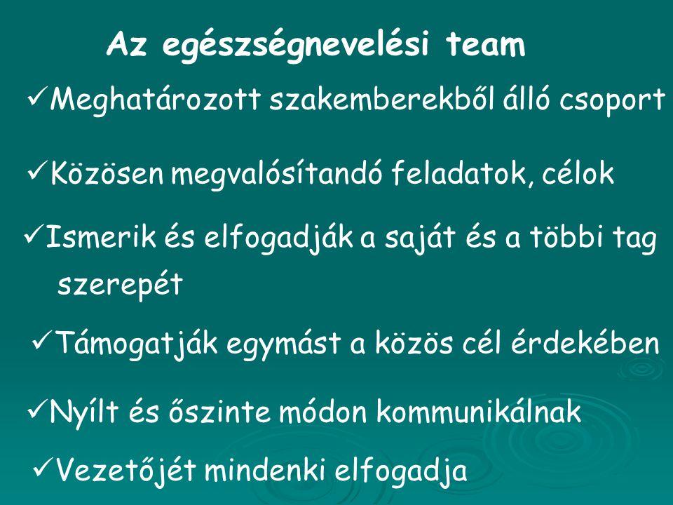 Az egészségnevelési team