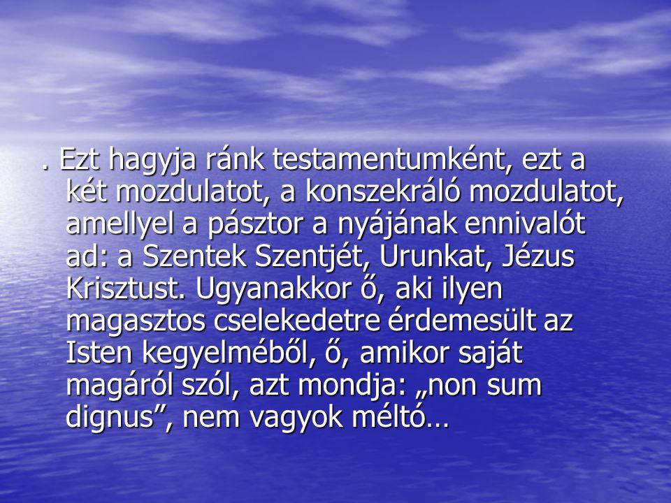 Ezt hagyja ránk testamentumként, ezt a két mozdulatot, a konszekráló mozdulatot, amellyel a pásztor a nyájának ennivalót ad: a Szentek Szentjét, Urunkat, Jézus Krisztust.