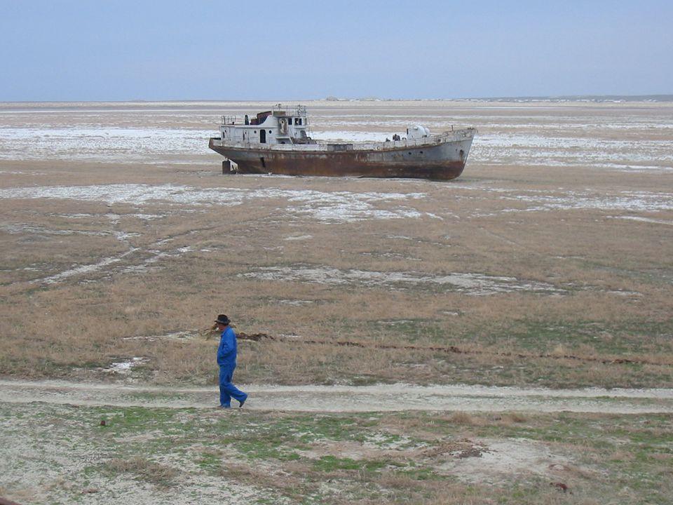 Fejlődés másik oldala Aral-tó kiszáradása DélÁzsia: esőerdők kiirtása: