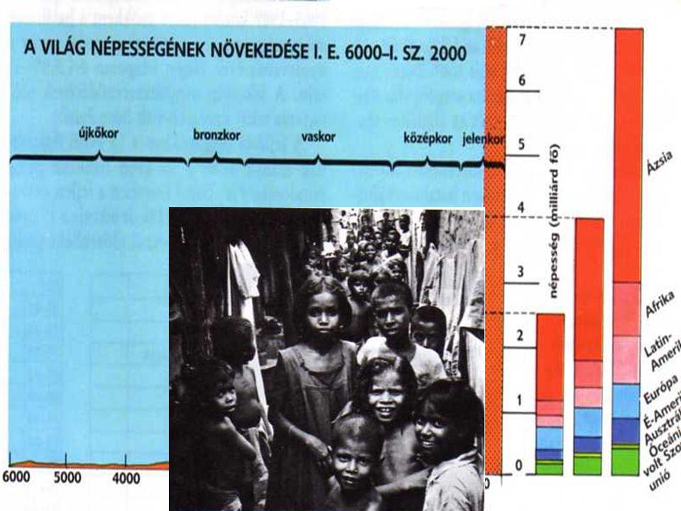 Népesség Népesség robbanás Míg a fejlett országokkal Oka: