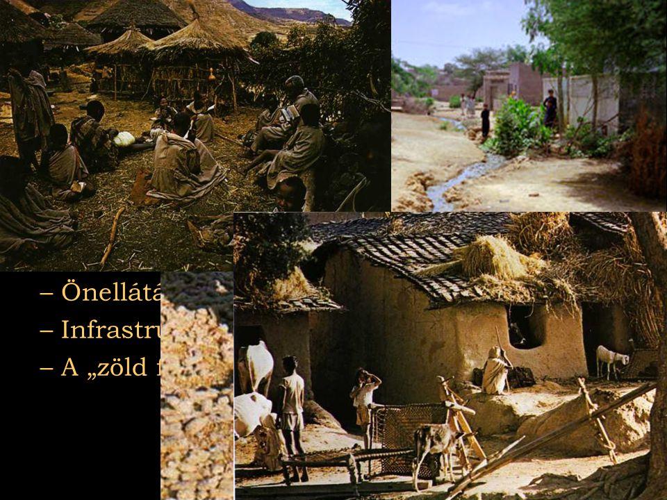 Mezőgazdaság Népesség nagy része falvakban él Jellemzői: Önellátás