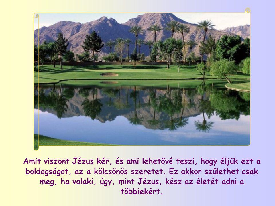 Amit viszont Jézus kér, és ami lehetővé teszi, hogy éljük ezt a boldogságot, az a kölcsönös szeretet.