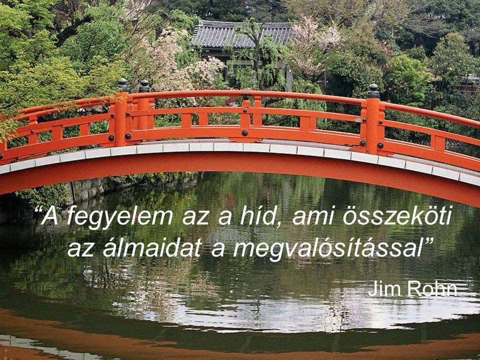 A fegyelem az a híd, ami összeköti az álmaidat a megvalósítással