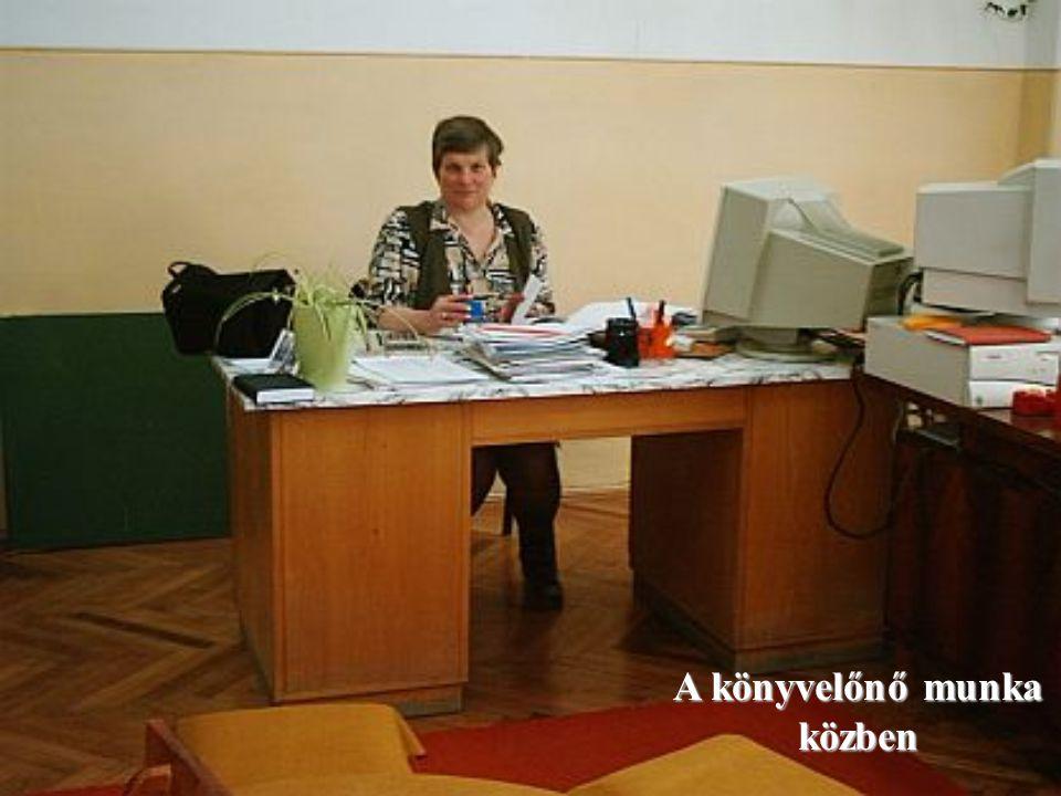 A könyvelőnő munka közben