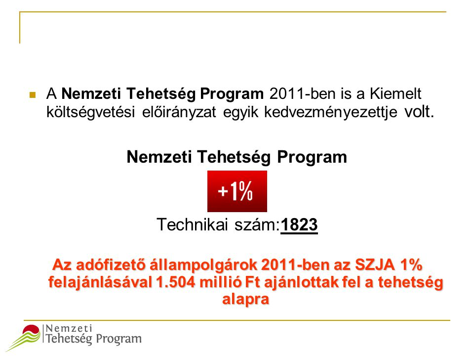 Nemzeti Tehetség Program
