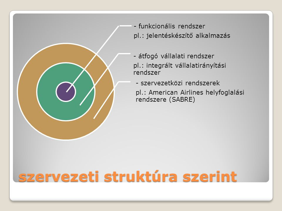 szervezeti struktúra szerint