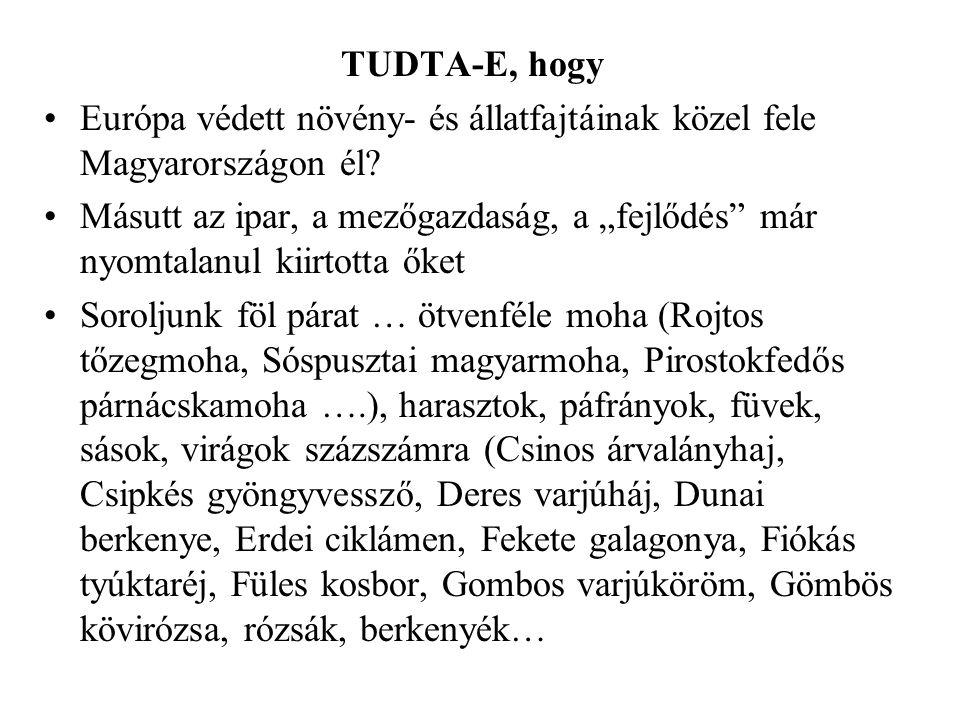 TUDTA-E, hogy Európa védett növény- és állatfajtáinak közel fele Magyarországon él