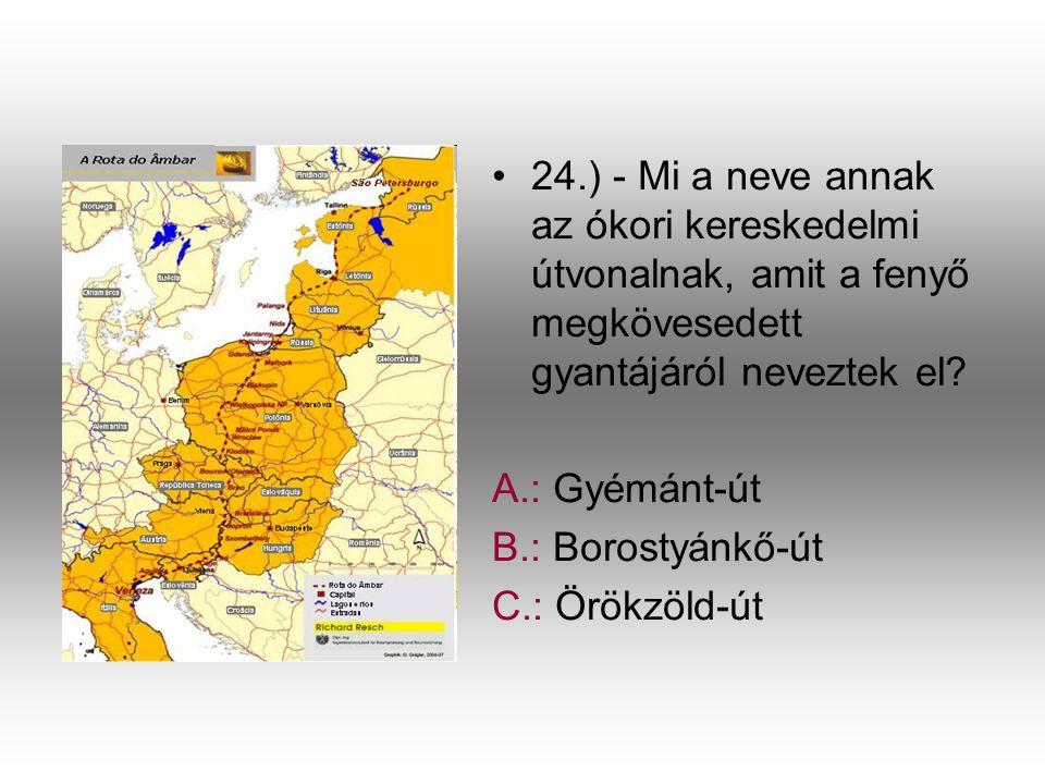 24.) - Mi a neve annak az ókori kereskedelmi útvonalnak, amit a fenyő megkövesedett gyantájáról neveztek el