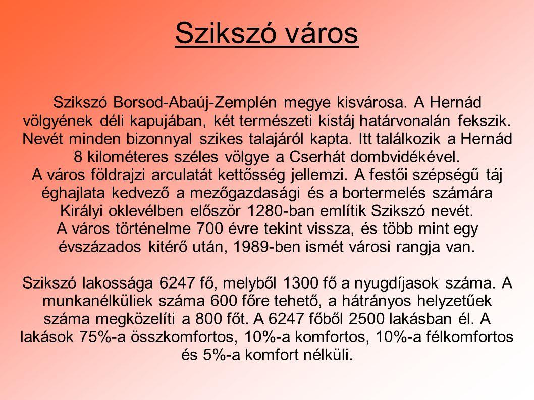 Királyi oklevélben először 1280-ban említik Szikszó nevét.