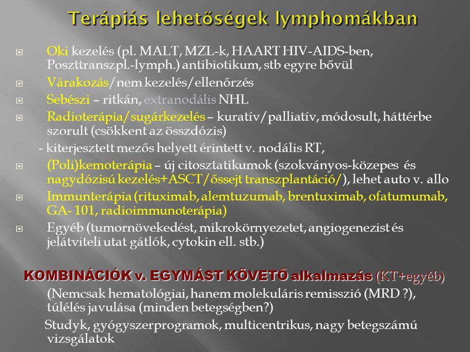Terápiás lehetőségek lymphomákban
