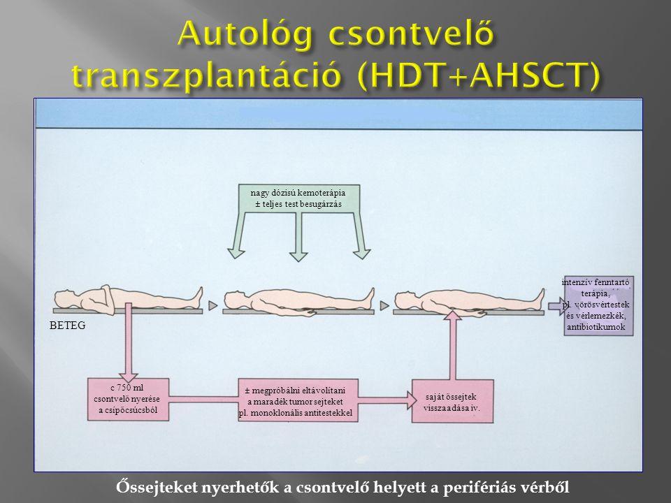 Autológ csontvelő transzplantáció (HDT+AHSCT)