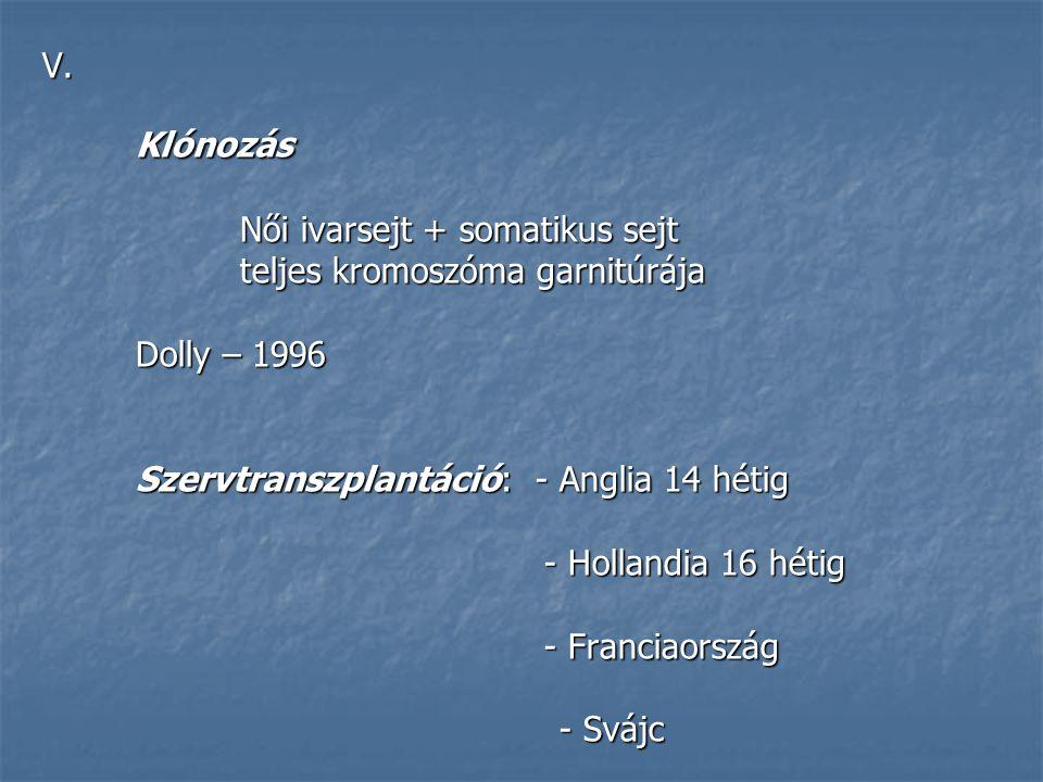 Női ivarsejt + somatikus sejt teljes kromoszóma garnitúrája