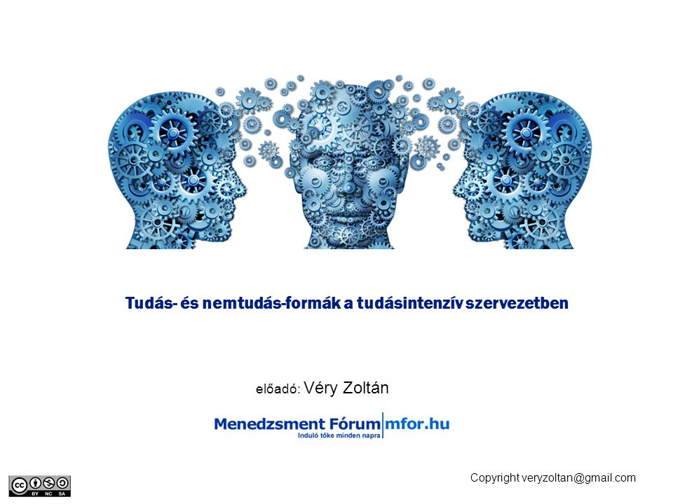 Tudás- és nemtudás-formák a tudásintenzív szervezetben