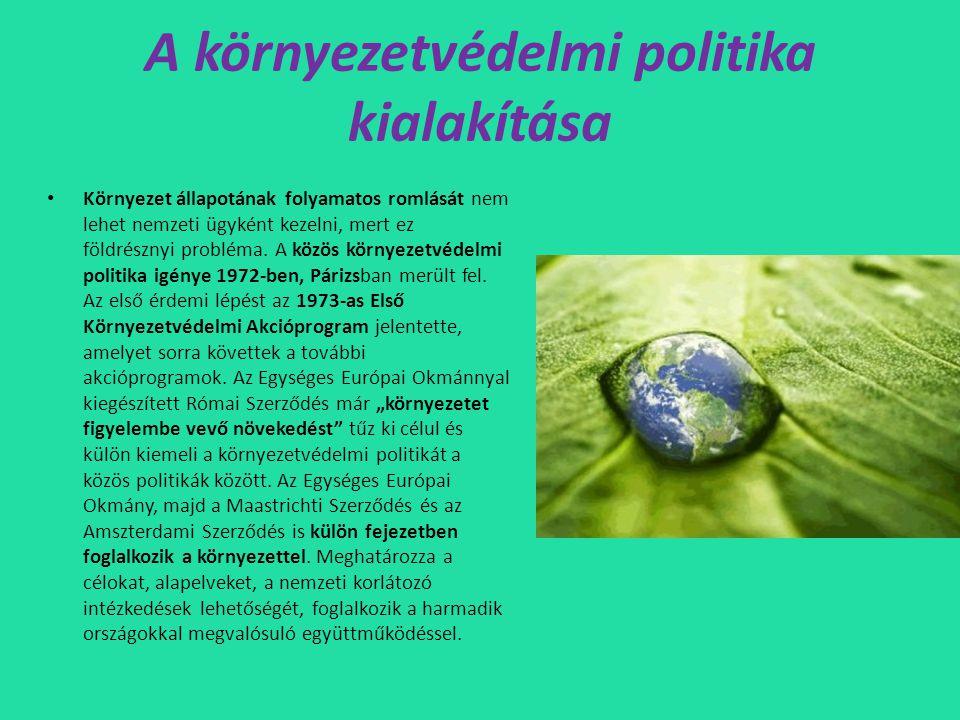 A környezetvédelmi politika kialakítása