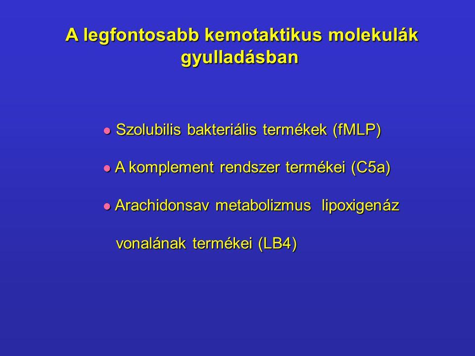 A legfontosabb kemotaktikus molekulák