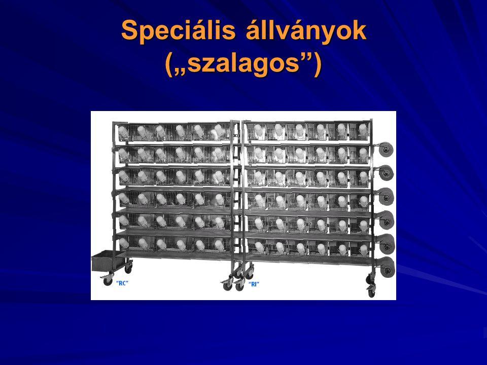 """Speciális állványok (""""szalagos )"""