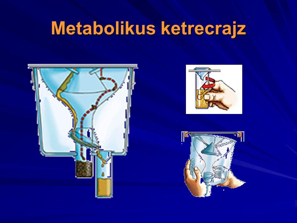 Metabolikus ketrecrajz
