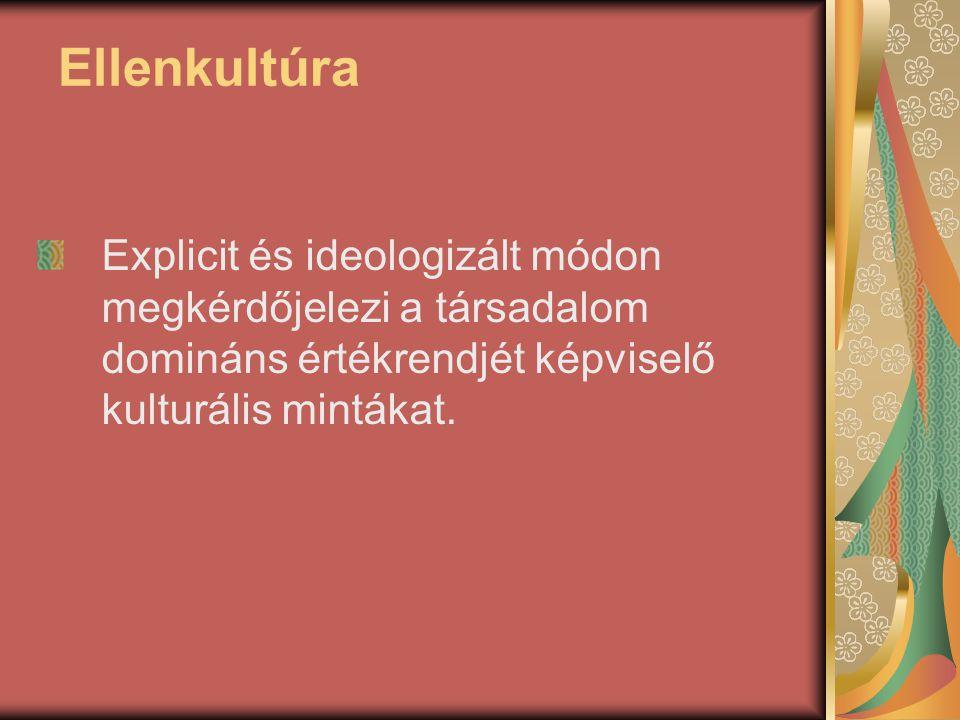 Ellenkultúra Explicit és ideologizált módon megkérdőjelezi a társadalom domináns értékrendjét képviselő kulturális mintákat.