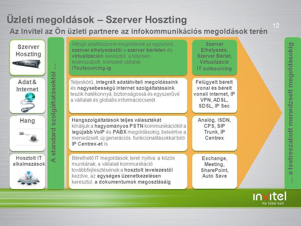 Üzleti megoldások – Szerver Hoszting
