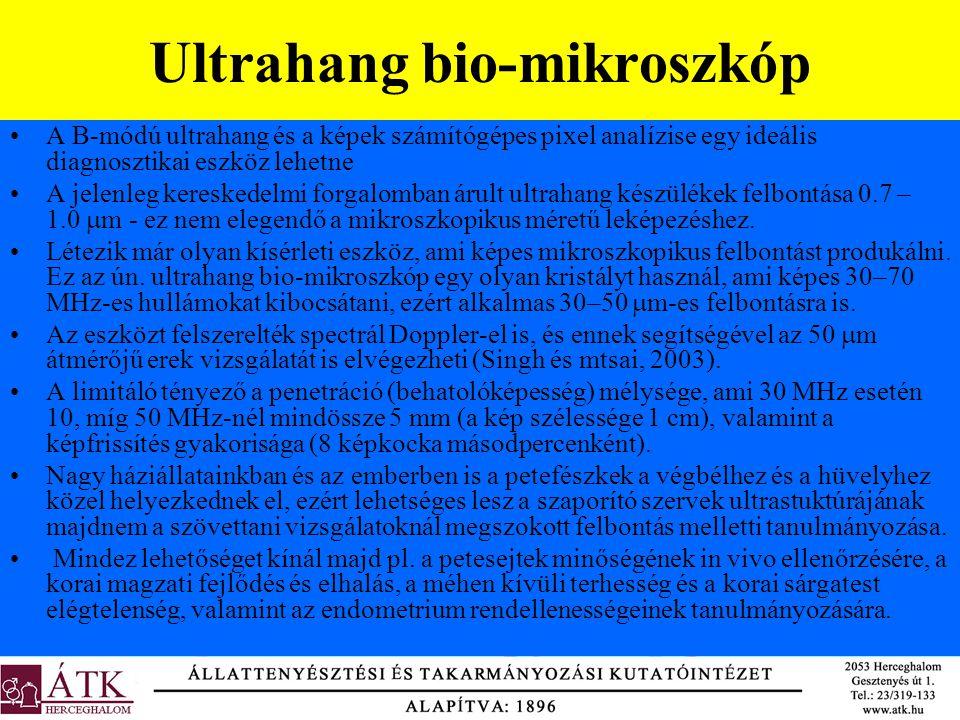 Ultrahang bio-mikroszkóp