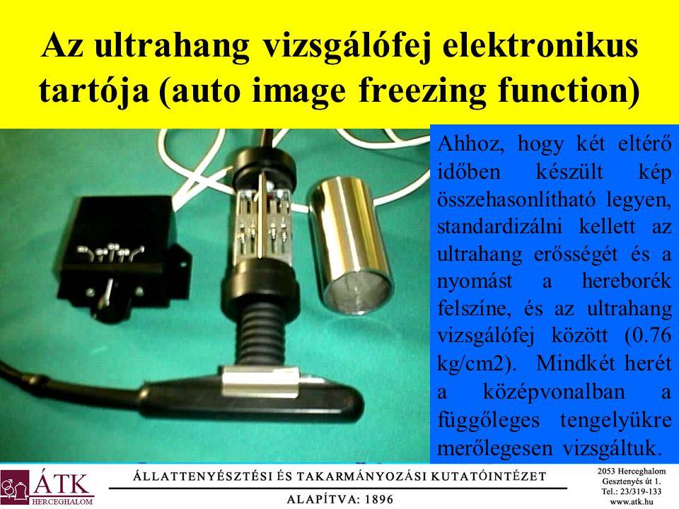 Az ultrahang vizsgálófej elektronikus tartója (auto image freezing function)
