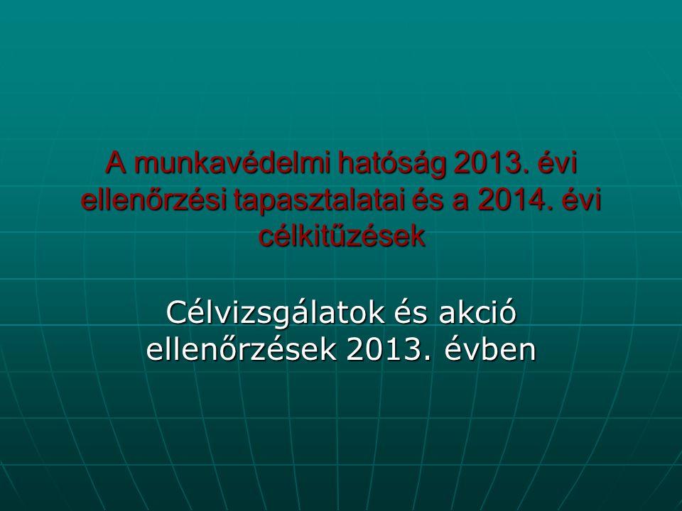 Célvizsgálatok és akció ellenőrzések 2013. évben