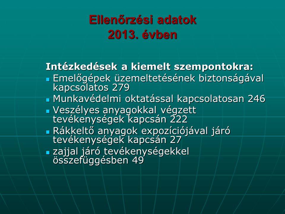 Ellenőrzési adatok 2013. évben