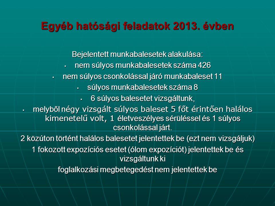 Egyéb hatósági feladatok 2013. évben