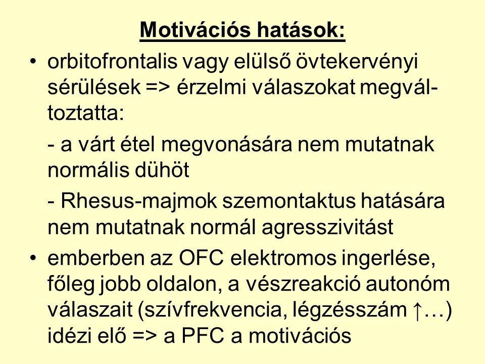 Motivációs hatások: orbitofrontalis vagy elülső övtekervényi sérülések => érzelmi válaszokat megvál-toztatta:
