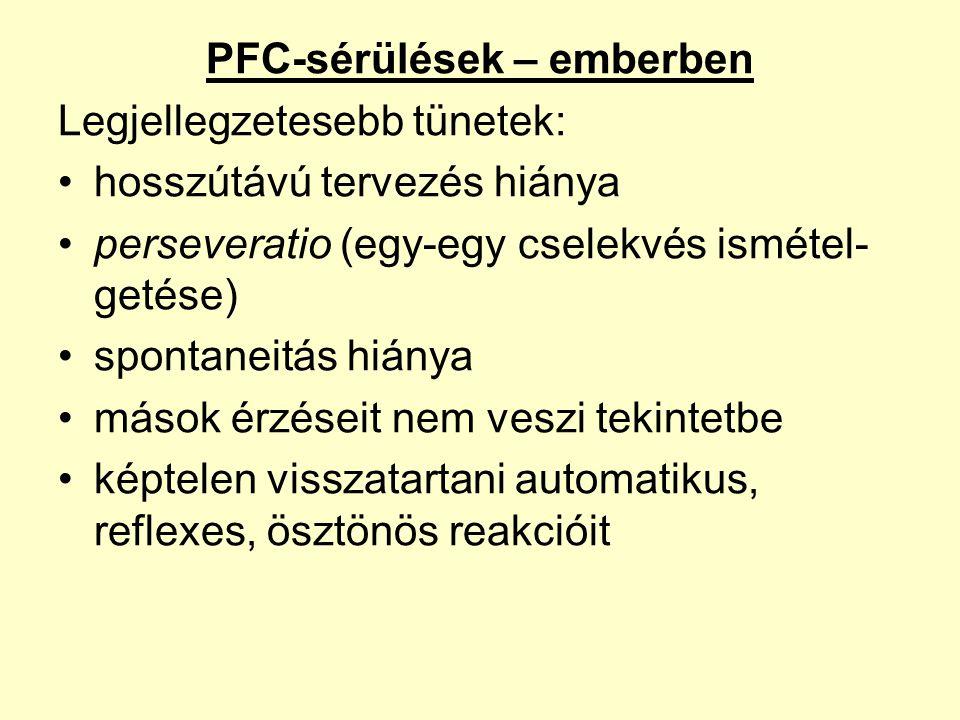 PFC-sérülések – emberben