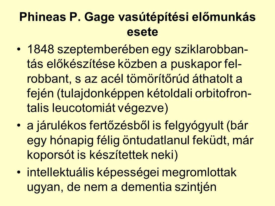 Phineas P. Gage vasútépítési előmunkás esete