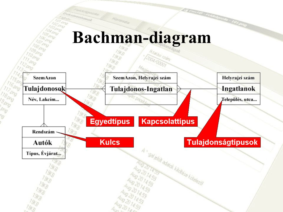 Bachman-diagram