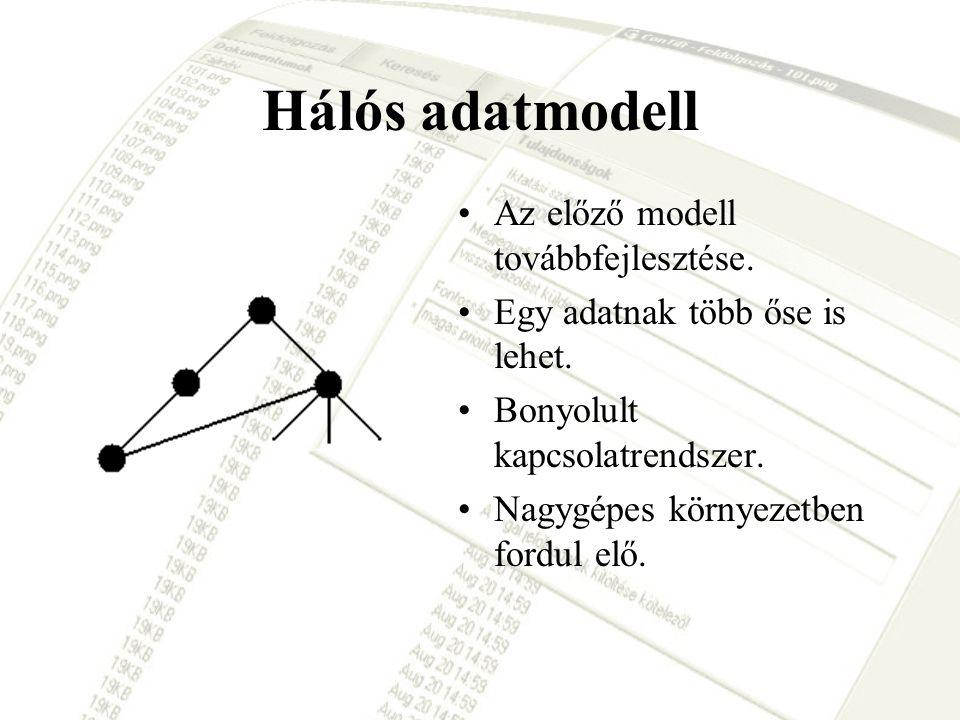 Hálós adatmodell Az előző modell továbbfejlesztése.