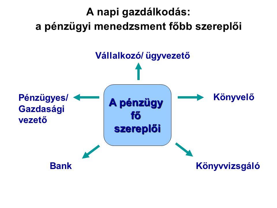 A napi gazdálkodás: a pénzügyi menedzsment főbb szereplői