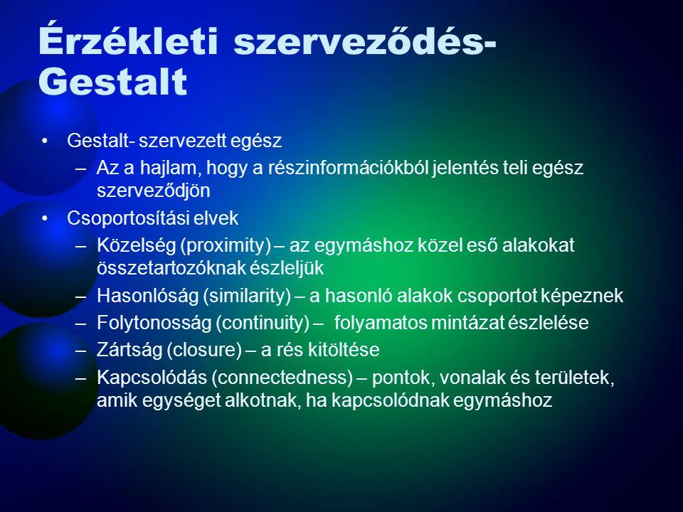 Érzékleti szerveződés- Gestalt