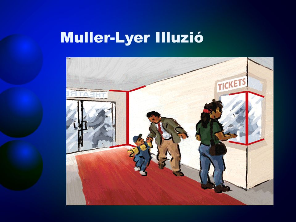 Muller-Lyer Illuzió